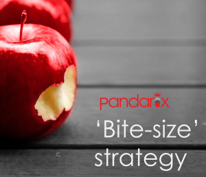 Pandarix Bite Size Strategy